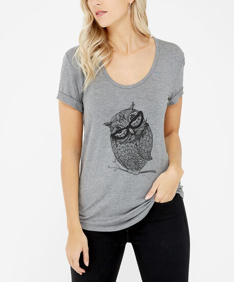 owl, Grey, hi-res